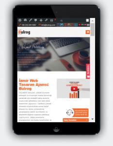 Mobil Uyumlu Web Tasarım - Bulrog Web Tasarım Ajansı